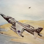 Harrier over the Falklands