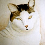 White Cat with Tabby Bonnet